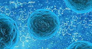 Les nano-missiles, une nouvelle arme contre le cancer