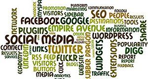 Les réseaux sociaux dominent l'usage d'Internet